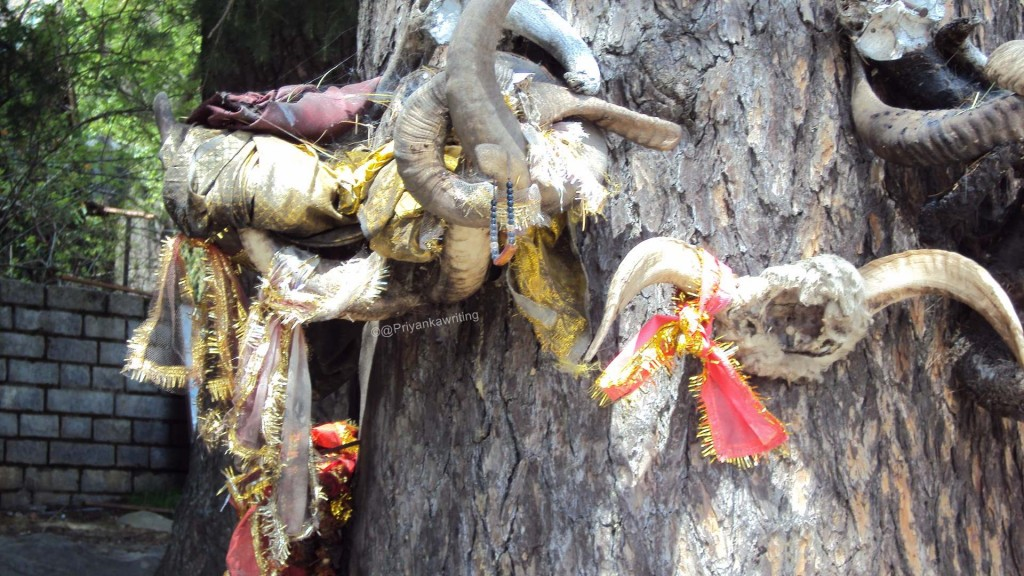 Animal sacrifices seem to be quite common at this temple!