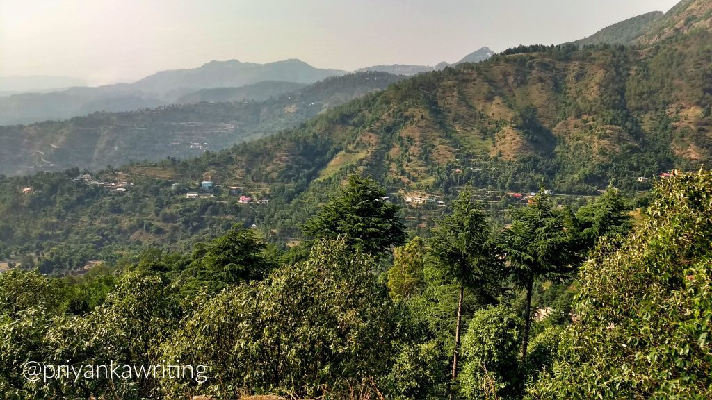 wandering in the himalayas - Shoghi